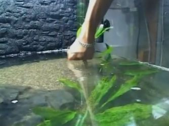 Дизайн аквариума своими руками12
