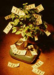Где хранить деньги по фен шуй