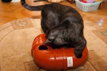 Игрушки для кошек своими руками. №1 4.1