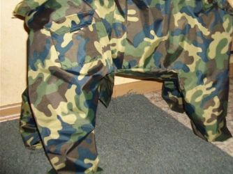 одежда для мопсов13