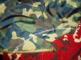 одежда для мопсов15