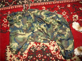 одежда для мопсов19