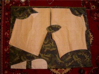 одежда для мопсов5