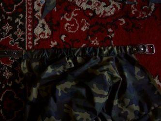 одежда для мопсов8