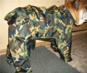 Одежда для собак своими руками 25
