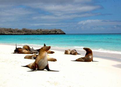 Эквадор - пляжи