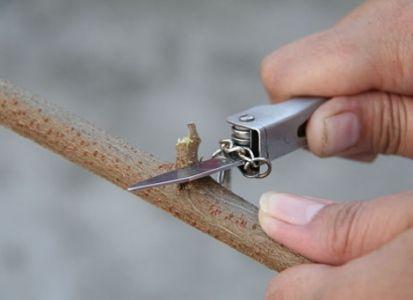 Как сделать лук своими руками3