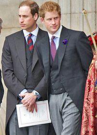 Принц Гарри с братом Уильямом