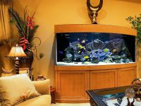 Тумба под аквариум5