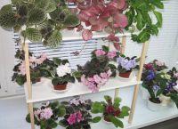 Полки для цветов на подоконник4