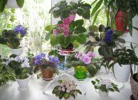 Полки для цветов на подоконник8