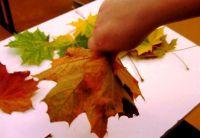 Осенний букет своими руками для детского сада 22