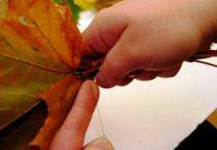 Осенний букет своими руками для детского сада 24