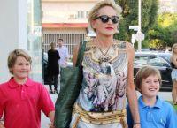 Пользователи Сети забросали камнями 58-летнюю актрису Шэрон Стоун