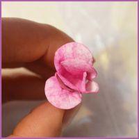 Цветы для скрапбукинга своими руками 11 (Copy)