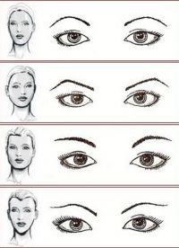 Как правильно подобрать брови