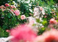 фотосессия с розами 1
