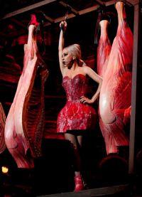 платье из мяса леди гага 3