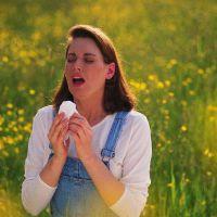 Аллергия на амброзию симптомы