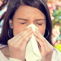 Аллергия на лавровый лист
