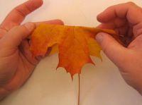 поделки на тему осень1
