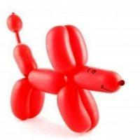 как сделать из шарика собачку10