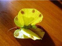 Бабочки из гофрированной бумаги24