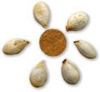 панно из арбузных семечек
