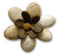 панно из арбузных семечек3