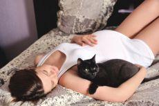 Можно ли гладить кота беременным