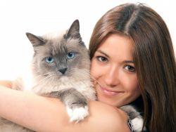 лекарство для кошек от глистов таблетки