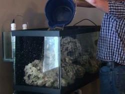 Вода для аквариума в домашних условиях 1