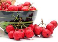 Ягоды боярышника польза и вред как принимать