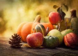 Поделки к празднику осени для начальных классов