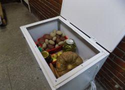 Термошкафы для хранения овощей