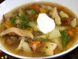 грибной суп из свежих подберезовиков