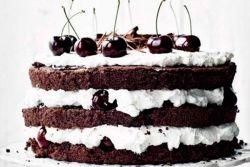 Торт в домашних условиях бисквитный шоколадный