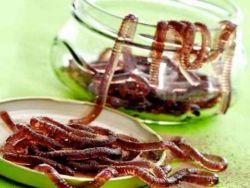 червяки из желатина