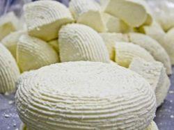 домашний адыгейский сыр из молока