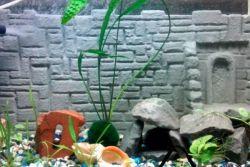 Фон для аквариума своими руками