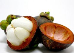 фрукт мангустин полезные свойства
