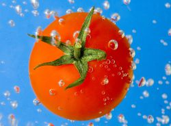 Какие витамины содержатся в помидорах