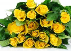 Желтые розы что обозначают