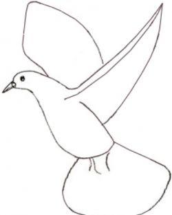 Как поэтапно нарисовать карандашом голубя детям 3