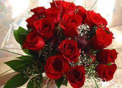 К чему дарят красные розы женщине