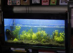 Как сделать подсветку аквариума своими руками