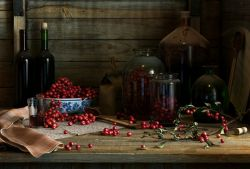 Как приготовить Домашнее брусничное вино из брусники рецепт с фото
