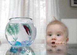 рыба для детей до года