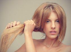 Сухие волосы - что делать? Suhie_volosy_chto_delat