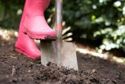 нужно ли копать огород осенью